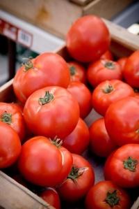 tomatopic
